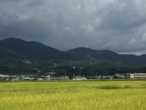 三岳城(三岳山)